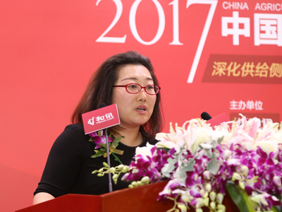 华文大观执行董事、上市公司风控专家 安娜