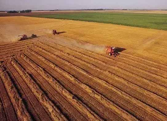 深化供给侧改革 资本助力农业创新-专题