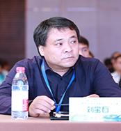 冶金工业信息标准研究院教授级高工刘宝石