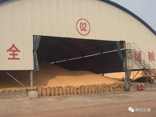 绥化市兰西县明宇玉米种植专业合作社负责人王明宇告诉记者,他从去年10月份开始收粮,一直赔钱,到现在赔了20多万元了,目前他们有8000吨玉米库存,感觉现在价格可以接受,他准备再存2000吨玉米库存。