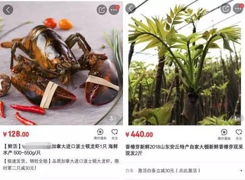 电商平台上的香椿芽和波士顿龙虾价格