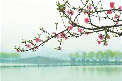 桃花冲风景区图片欣赏