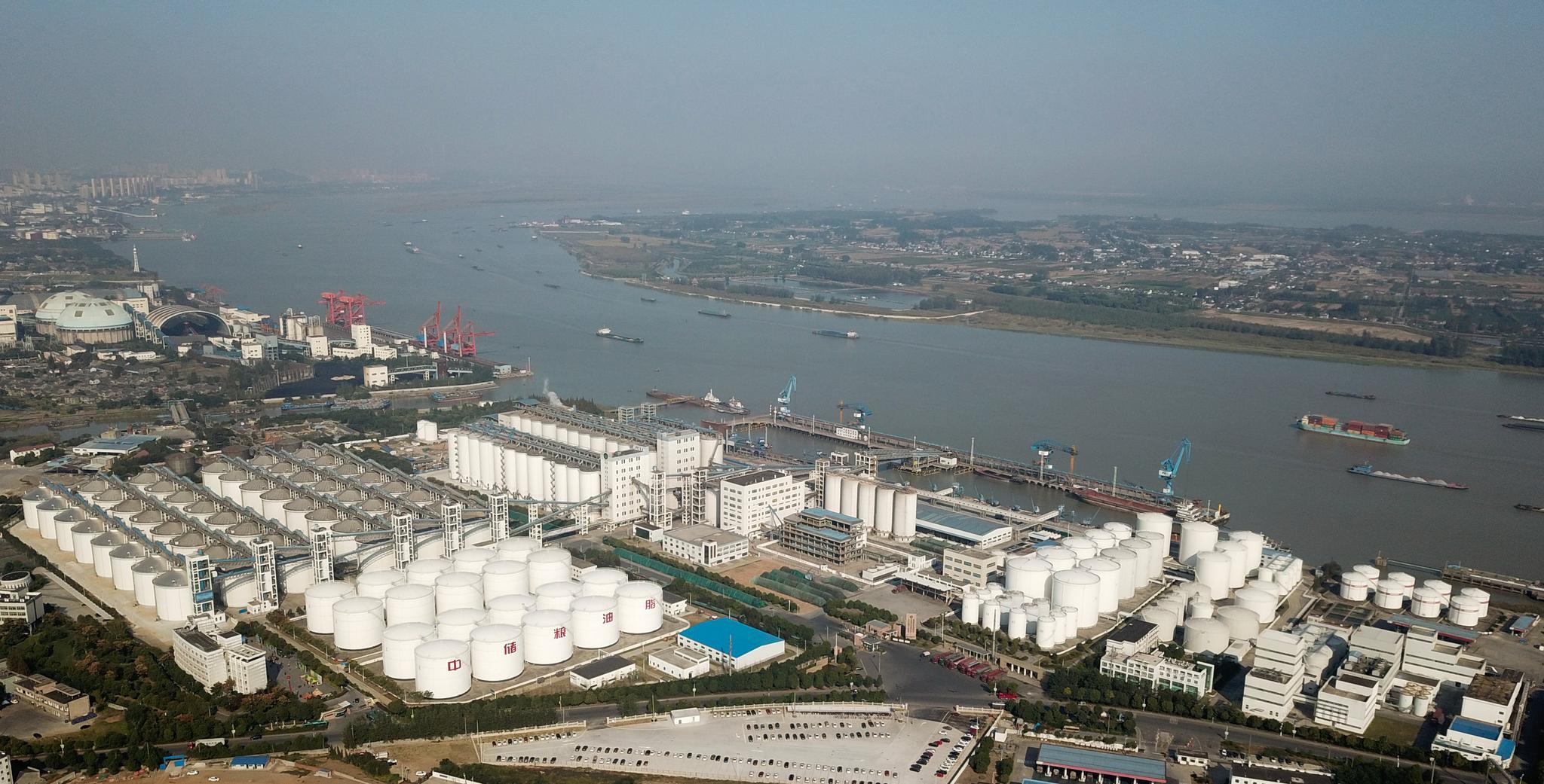 图片:新华社豆油等拟解除进口关税配额管理