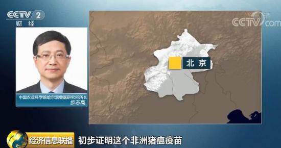 重大突破! 中国农科院发布一条好消息!有关猪瘟疫苗