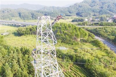 浦城县供电重新组塔  服务高速和线路安全(图片新闻)
