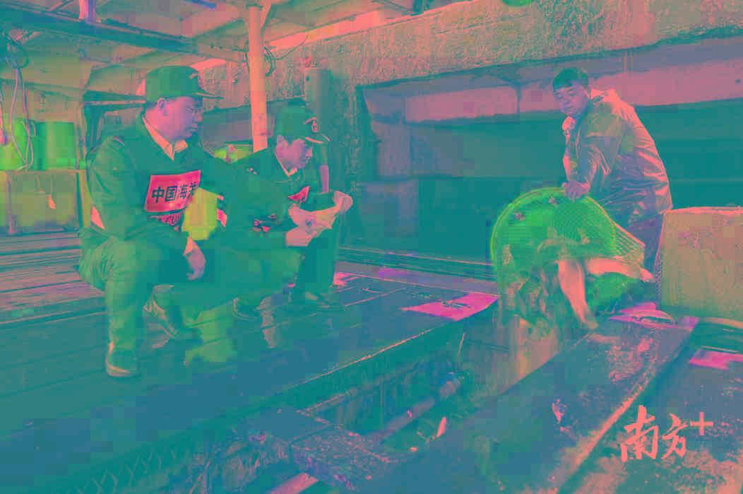珠海拱北关区国庆供港澳食品逾1700吨