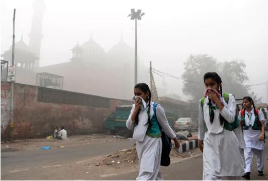 为什么印度人免疫力这么强?