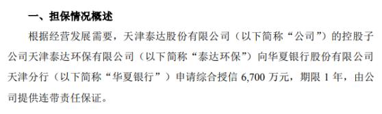 泰达股份为控股孙公司6700万元综合授信提供连带责任保证