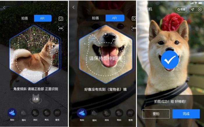 入局宠物经济,支付宝、众安保险打造数字化宠物险