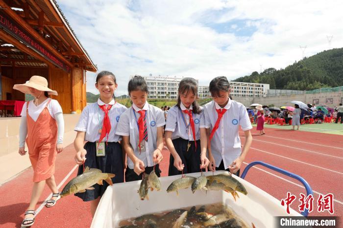 带鱼回家!广西侗乡小学连续三次期末发鱼奖励学生