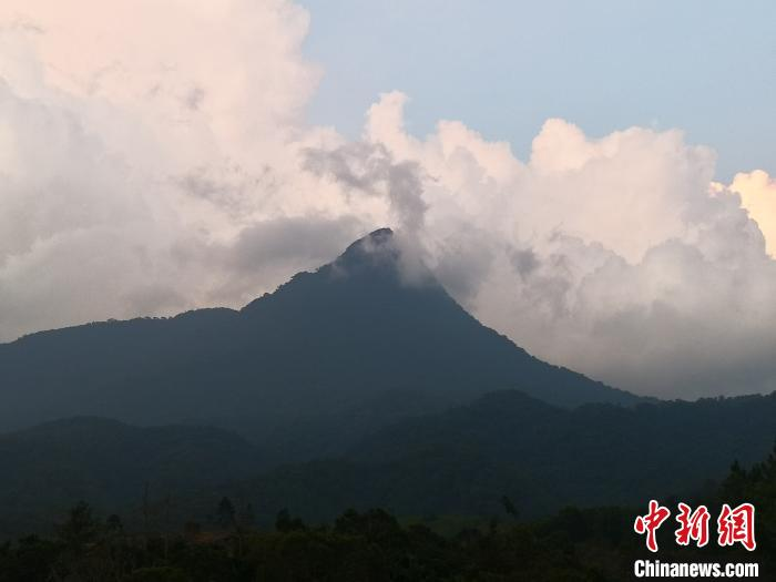http://www.edaojz.cn/difangyaowen/796102.html