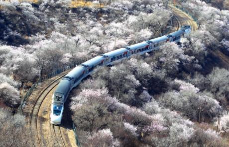 新华财经|全国铁路清明小长假发送旅客4991万人次