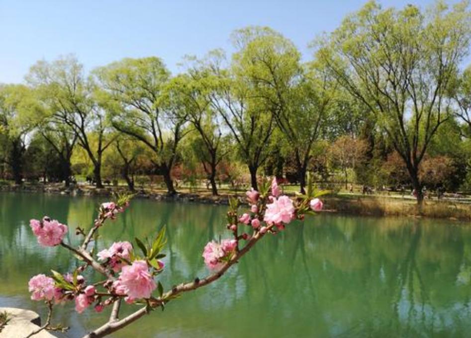 北京春天的感觉