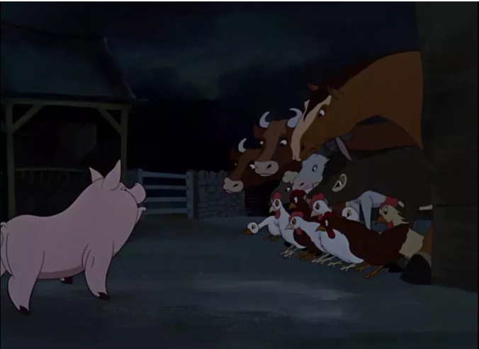 动物园回应狼圈养哈士奇?英国还曾把猪放飞到天上