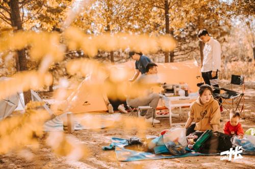 温榆一夏·一帐欢乐营 | 这个端午,解锁公园的第一百种玩法