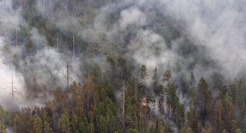 俄媒:俄罗斯萨哈共和国十处山林起火 一日内扑灭七处