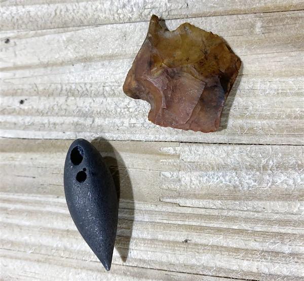 4米长鳄鱼体内惊现珍贵文物:距今已有8000年历史